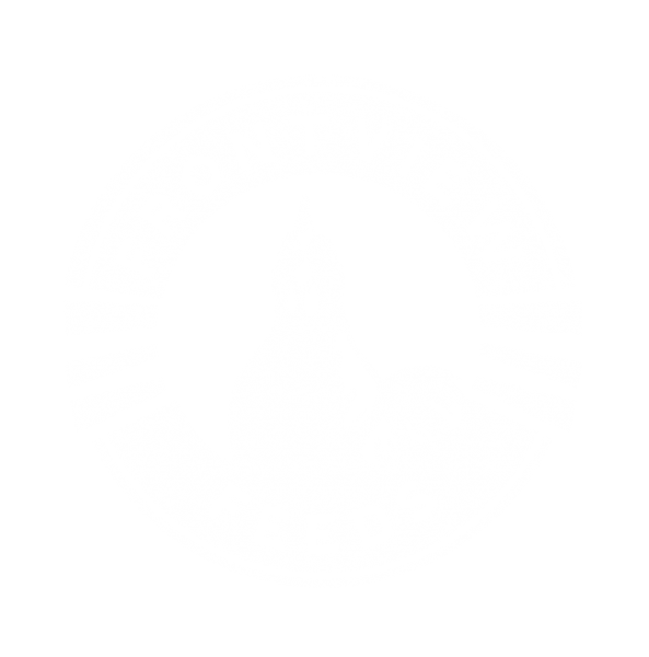Front View Feeds Logo White