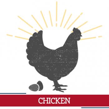 chicken icon, sunshine around a chicken with eggs