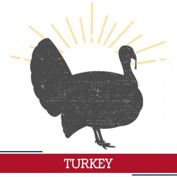 turkey icon, sunshine around a turkey